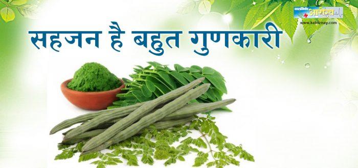 Drumstick | Food | Hindi Article | Kalnirnay Blog